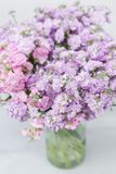 Bouquet of Beautiful lilac color gillyflower, levkoy or matthiola. Spring flowers in vase on wooden table. Vertical. Bouquet of Beautiful lilac color gillyflower stock photos
