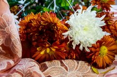 Bouquet of beautiful orange flowers stock images