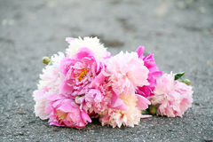 Bouquet of beautiful peonies on a road Royalty Free Stock Photo