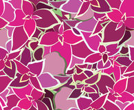 Bouquet Beautiful Pink Flower. Seamless Pattern. Vector Illustra Royalty Free Stock Images