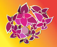 Bouquet Beautiful Pink Flower. Vector Illustration. Royalty Free Stock Photography