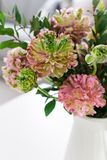 Bouquet of beautiful pink and green ranunculus flowers. And myrtle in minimal interior royalty free stock photo