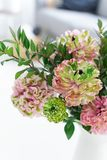Bouquet of beautiful pink and green ranunculus flowers. And myrtle in minimal interior royalty free stock images