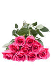 Bouquet of beautiful pink roses. On white background Stock Images