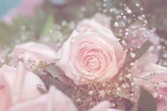 Bouquet of beautiful pink roses. Selective focus Stock Photos