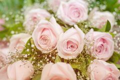 Bouquet of beautiful pink roses. Selective focus Royalty Free Stock Photo
