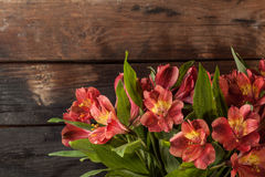 Bouquet of red lily Royalty Free Stock Photography