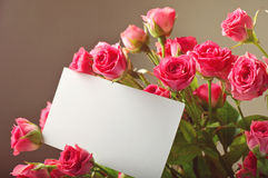 Bouquet of beautiful red roses with a blank greeting card Stock Photos