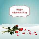 A bouquet of beautiful red roses lay on white snow. A bouquet of beautiful red roses lying on white snow. Around, many petals of red roses turn into petals of Stock Image