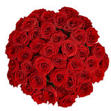 Bouquet of beautiful red roses on a white background with clipp Stock Images