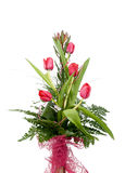 Bouquet of beautiful red tulips Royalty Free Stock Image