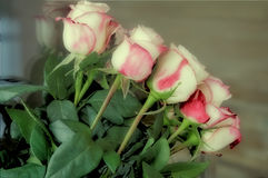 Bouquet of beautiful roses against the window. On the table near the window stands the bouquet with lots of beautiful pink and white roses stock image