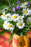 Bouquet of beautiful summer flowers Royalty Free Stock Photo