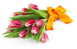 Bouquet of beautiful tulips with bow-knot. Royalty Free Stock Photo