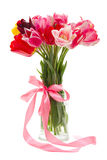 Bouquet of beautiful tulips Royalty Free Stock Photos