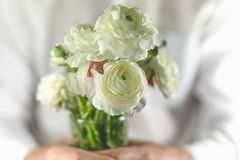 Man holding bouquet of white flowers royalty free stock photos