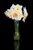 Bouquet from beautiful white narcissus in vase iso Royalty Free Stock Photos