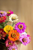 Bouquet of beautiful wild flowers in a wattled Royalty Free Stock Images