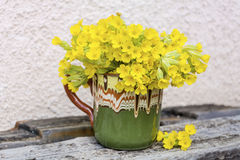 Bouquet of beautiful wild primroses flowers in a vintage clay cup. Beautiful bouquet of  yellow evening primroses Stock Photos