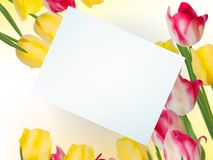 Bouquet from beauty flowers with card. EPS 10 Stock Image