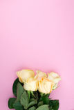 Bouquet of beige roses on pink background, flat lay, top view, copy space. Mothers day. Valentines day Stock Image