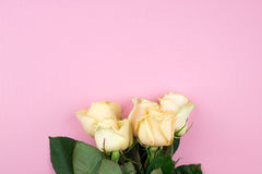 Bouquet of beige roses on pink background, flat lay, top view, copy space. Mothers day. Valentines day Stock Photo