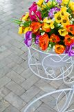 Bouquet in bicycle Stock Photography