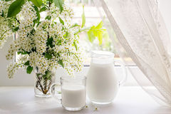 Bouquet of bird cherry and milk on the window Royalty Free Stock Photos
