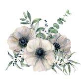 Bouquet blanc d'anémone d'aquarelle Fleur, feuilles peintes à la main d'eucalyptus et genévrier d'isolement sur le fond blanc illustration libre de droits