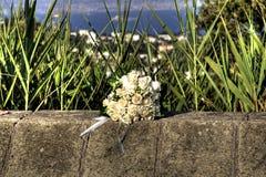 Bouquet blanc sur le mur Images stock
