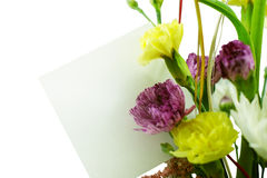 Bouquet with blank card Royalty Free Stock Images
