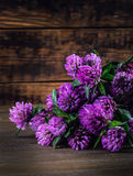 Bouquet of blooming clover on the wooden background. Royalty Free Stock Photo