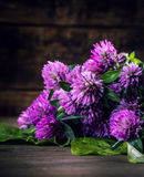 Bouquet of blooming clover on the wooden background. Royalty Free Stock Photography