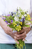 Bouquet of blooming forest flowers in woman`s hands stock images