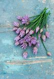 Bouquet blooming onion chives Royalty Free Stock Photo