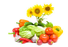 Bouquet of blooming sunflowers and fresh vegetables on a white b. Ackground. horizontal photo Stock Image