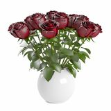 Bouquet of blossoming dark red roses in white ceramic pot. Isolated on white background. 3D Rendering, Illustration Stock Images
