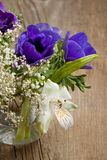 Bouquet of blue anemones Stock Images