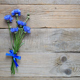 Bouquet of blue cornflowers Royalty Free Stock Image