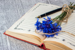Bouquet of blue cornflowers on the open book. Stock Image