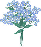 Bouquet of blue flowers Royalty Free Stock Image