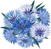 Bouquet with blue flowers Royalty Free Stock Image