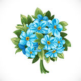 Bouquet of blue forget-me-not Royalty Free Stock Images