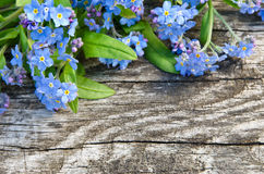 Bouquet of blue forget-me on a wooden background Stock Photo