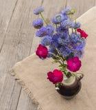 Bouquet of blue Globular (Globularia) flowers Stock Image