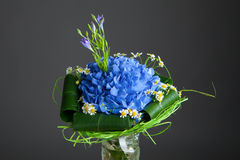 Bouquet of blue hydrangea flowers Stock Photography