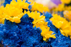 Bouquet from blue hydrangeas and yellow asters, a royalty free stock photo