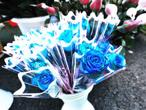 Bouquet of blue roses Stock Photo