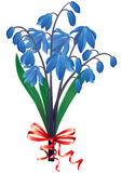 Bouquet blue snowdrops Royalty Free Stock Photography