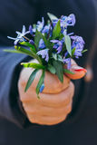 Bouquet of blue snowdrops in hand. With manicure on a dark blue background stock photos